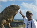 Giant iguana on Isla Muejes, Cancun.